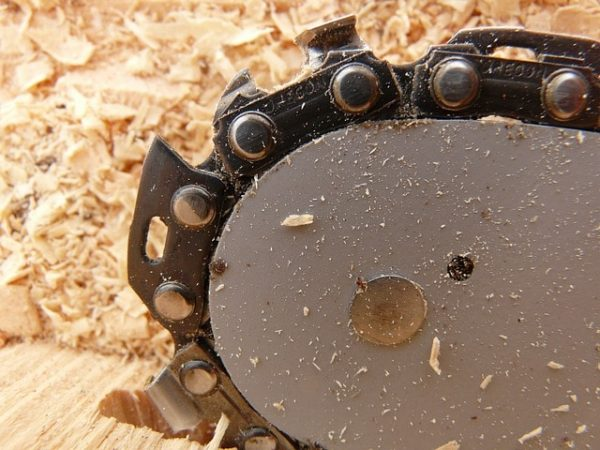 chainsaw blade embedded in the wood